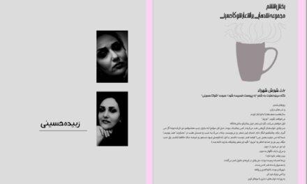 مجموعه نقدهایی بر اشعار شوکا حسینی – مینو نصرت، کیوان اصلاح پذیر.